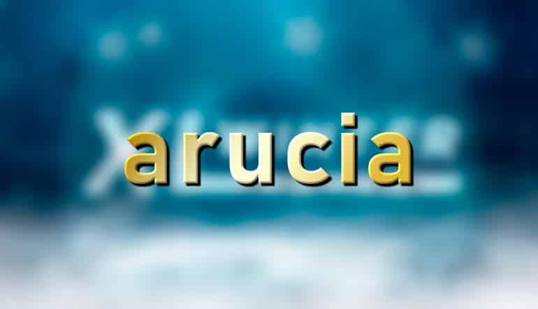 arucia победил в турнире.